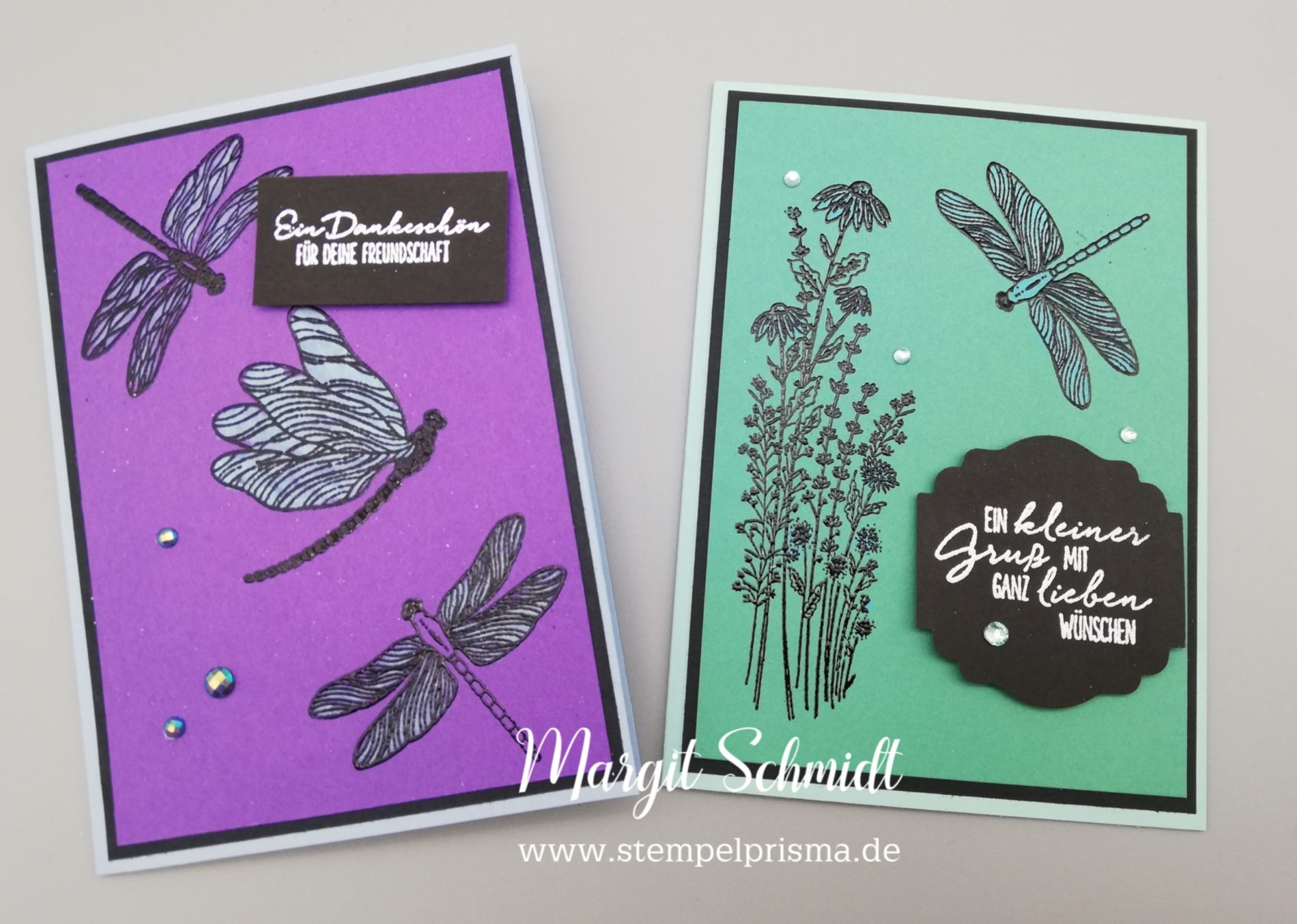 Karte Libellengarten besonders koloriert